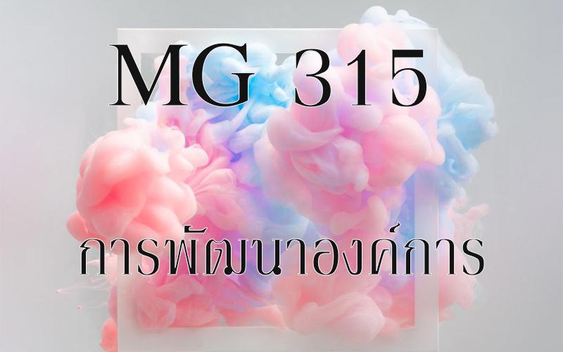 MG 315 การพัฒนาองค์การ