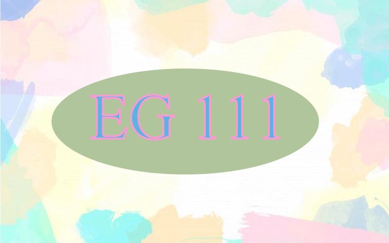 EG 111